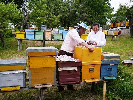 Viorel Iosif and his wife in the apiary