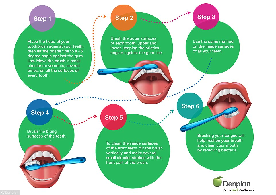 Denplan has created an infographic showing the best technique for toothbrushing, as many of us are unwittingly doing this wrong. It involves  angling the bristles at 45° towards the gum (top right, step 1) and brushing both sides of the teeth with small circular movements. The biting surface of the teeth (bottom left, st